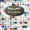 best price 1300 Channels MTD Arabic Global IPTV 1 Year Subscription For Android